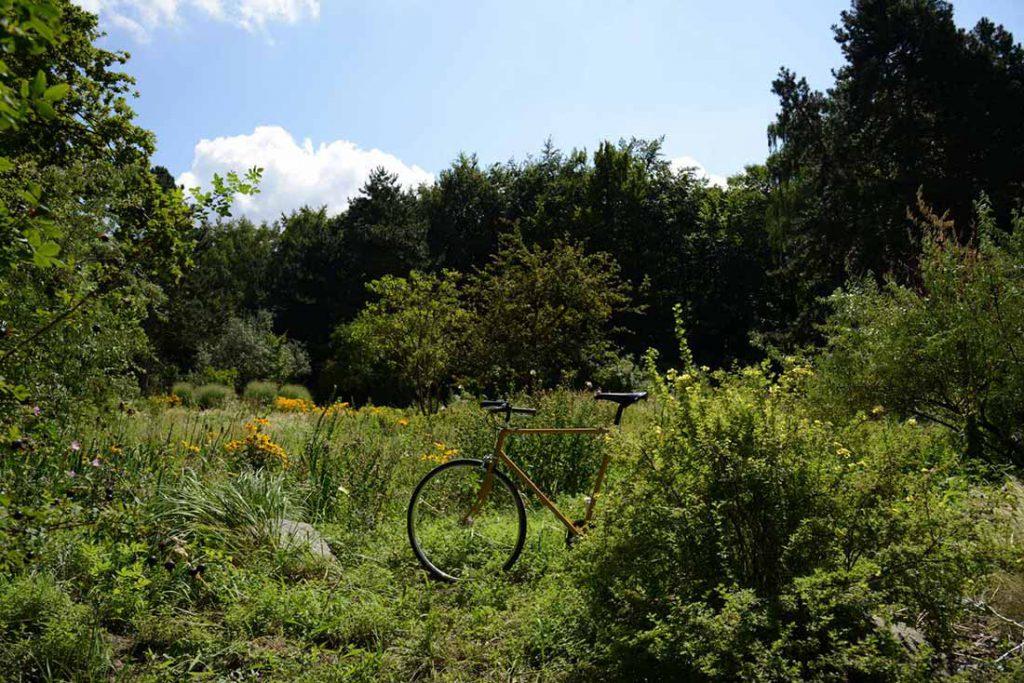 FLOTTWELL BERLIN Hotel - Fahrradstadt Berlin - Tiergarten